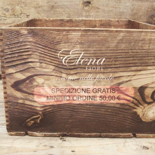 Spedizione Gratuita Elena Fiori