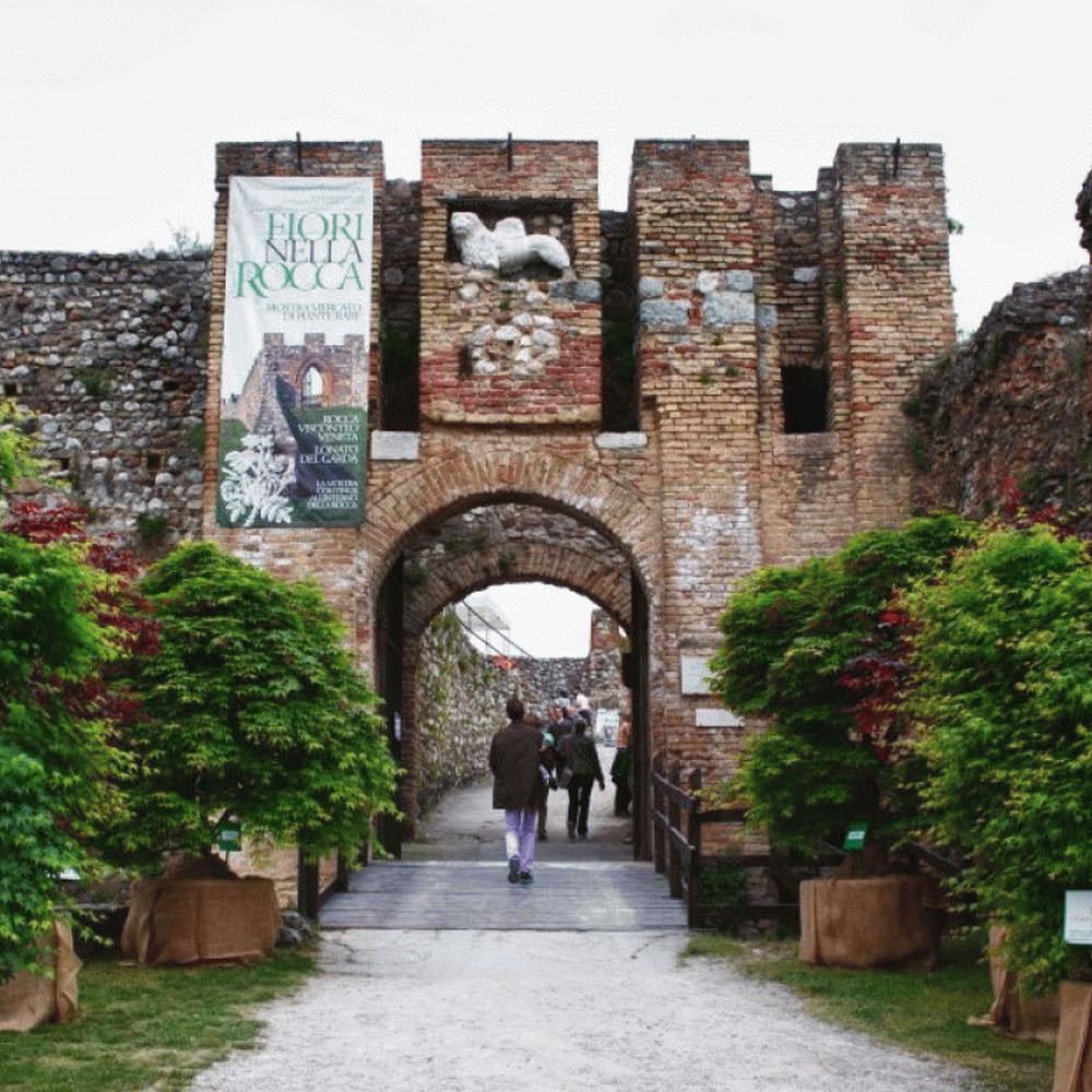 Fiori nella Rocca Lonato del Garda