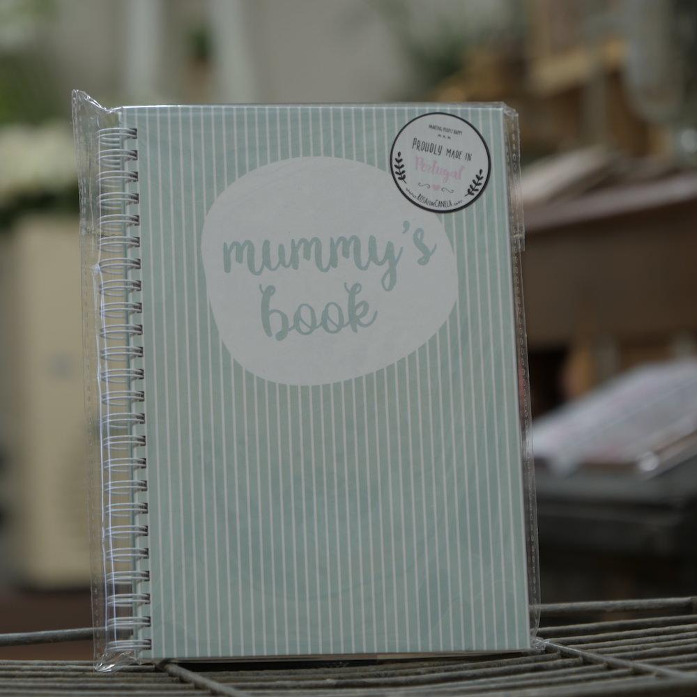 Baby Book Light Blue